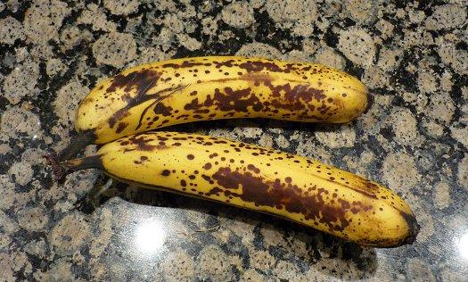 versuch experiment mit äpfeln und bananen