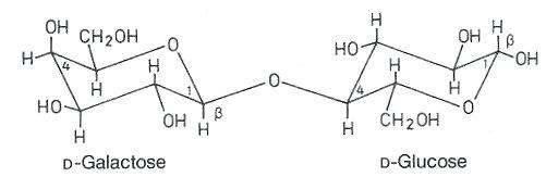 nicht reduzierende disaccharide